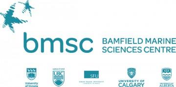 BMSC-360x178